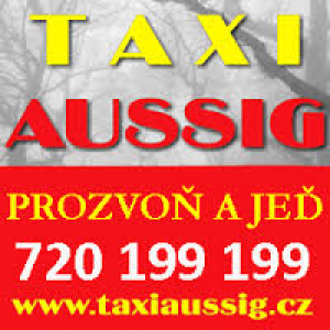 taxi-aussig.png